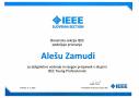 Zamuda-IEEE-Slovenia-YP 2020